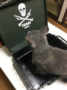 MEIHO-boxと猫