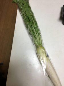 大根の葉っぱ長い