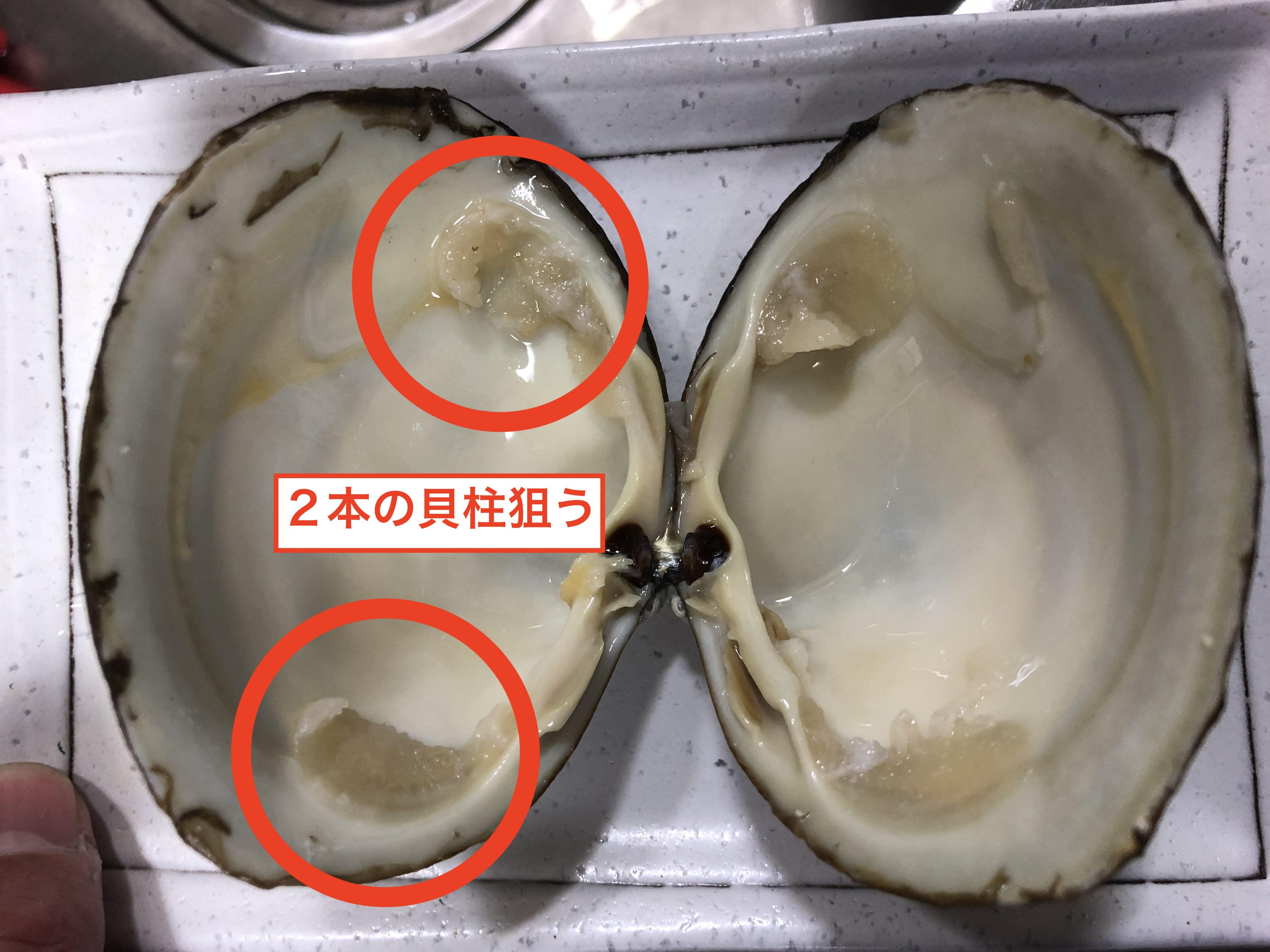 ホッキ貝の捌き方2