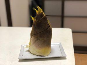 先端が黄色い筍